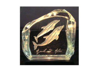 Wildlife__LucCenturyGlass_024